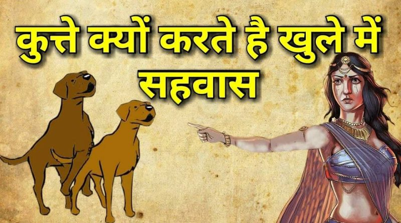 Dogs curse in the open due to this curse of Draupadi, you will go to the square knowing the reason.