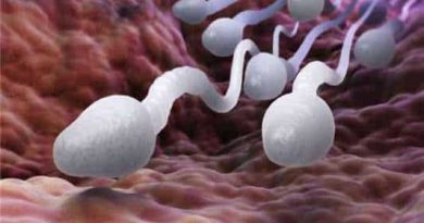There are big differences between sperm and semen, which is very important for every man to know.