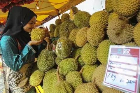 Which is the most expensive fruit in the world, you will be surprised to know the price